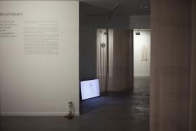 Imatge general de l'exposició